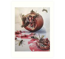 Pomegranate and Paper Wasps Art Print