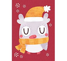 Snuggly Winter Owl Photographic Print