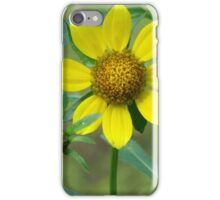 Center of Gold iPhone Case/Skin