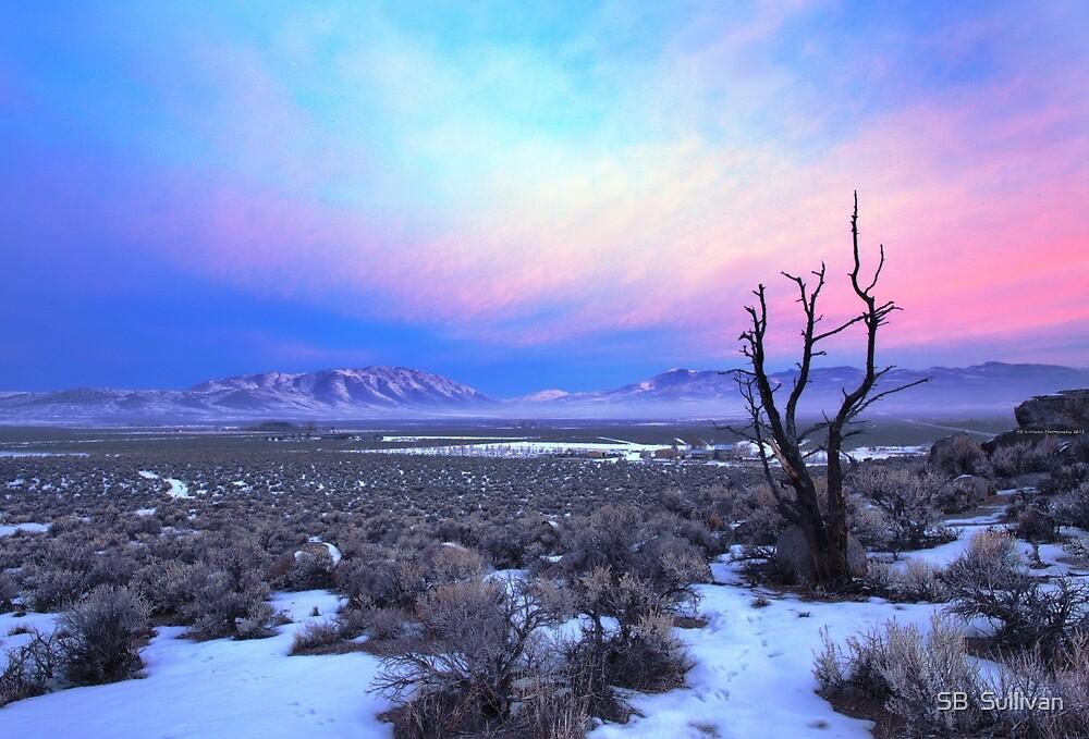 Nevada Winter Pre Sunrise  by SB  Sullivan