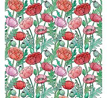 Watercolor poppy flowers pattern Photographic Print
