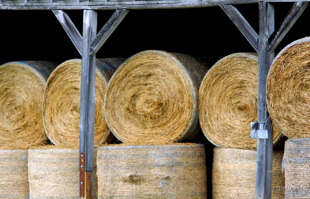The Hay Barn    ^ by ctheworld