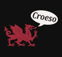 Welsh dragon says Welcome - Croeso by stuwdamdorp