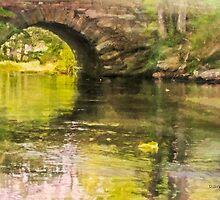 Through Stone Arch, Bristol Mills, Maine by Dave  Higgins