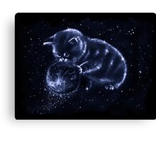 Space cat Canvas Print