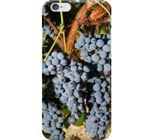 Grapes Vineyard  iPhone Case/Skin