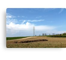 field with electricity pylon Canvas Print