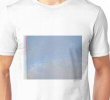 Birds Flying By Unisex T-Shirt