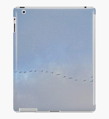Birds Flying By iPad Case/Skin