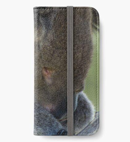 Sleeping koala iPhone Wallet/Case/Skin