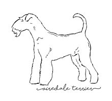 Airedale Terrier sketch by paulrommer