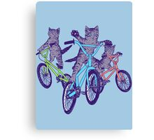 BMX Kittens Canvas Print