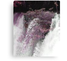 Trees in the Stream Canvas Print