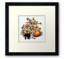 Kitty  in a Pumpkin Patch Framed Print