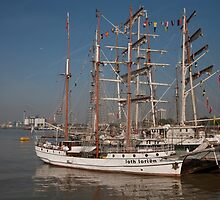 Loth lorien docked at the tall ships festival by Keith Larby