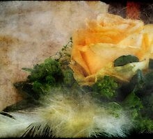 Feathery Rosetimes by Andrea Ida Rausch