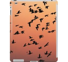 Flock f Birds at Sunset iPad Case/Skin