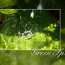 Green Spa by Andrea Ida Rausch