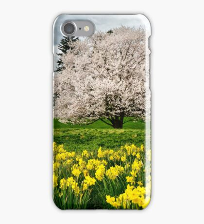 The Colors of Spring iPhone Case/Skin