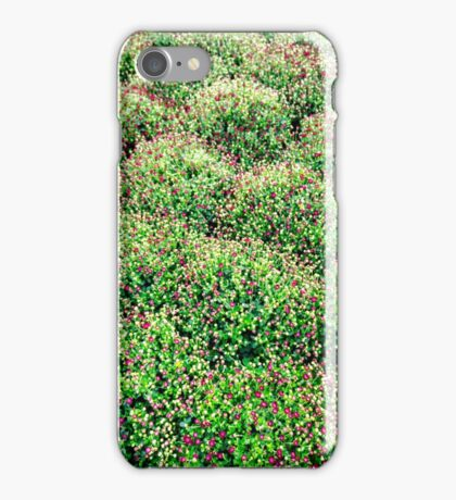 Don't Eat The Berries iPhone Case/Skin