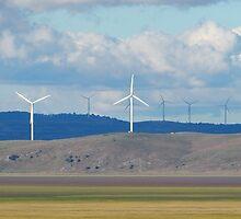 Capital Wind Farm Australia Panorama by ozscottgeorge