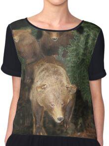 bears Chiffon Top