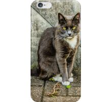 White Paws iPhone Case/Skin