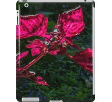 Red Leaved Plant Leith Park Victoria 20160920 7520 iPad Case/Skin