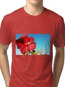 October Rose. Tri-blend T-Shirt