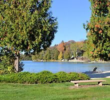 Autumn at the Lake Shore by Kathleen Brant