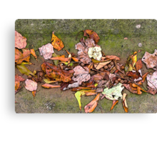 Fall in Swing Canvas Print