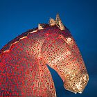 Kelpie Horse Head by M.S. Photography & Art