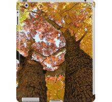 Autumn Rainbow 2 iPad Case/Skin