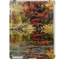 McDonough Lake in Autumn iPad Case/Skin