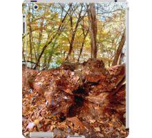 Sleeping Tree iPad Case/Skin