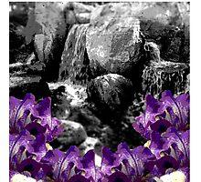 Purple Flowers Waterfall Photographic Print