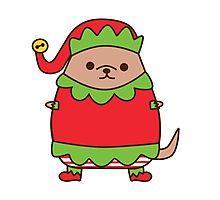 Cute Christmas Elf Pupsheen Photographic Print