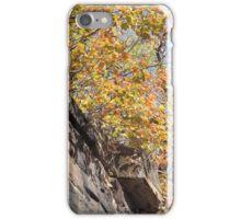 Harsimus Branch Embankment, Autumn View, Jersey City, New Jersey  iPhone Case/Skin