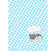 Sleepy Hamster Photographic Print