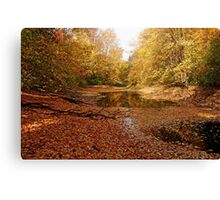 Autumn Beauty At The Pond Canvas Print