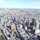 Aerial View, Lower Manhattan, Midtown Manhattan, New York City by lenspiro