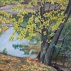 autumn at emerald necklace by Art  Ji