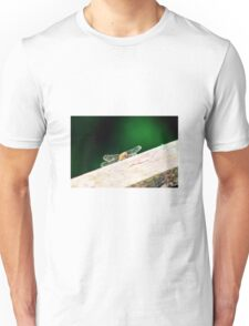 Dragonfly on the fence Unisex T-Shirt