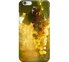 White Zinfandel Grape Harvest iPhone Case/Skin