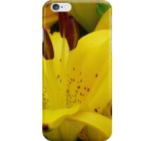 Yellow Asiatic Lily iPhone Case/Skin