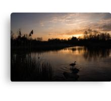 The Posing Goose Canvas Print