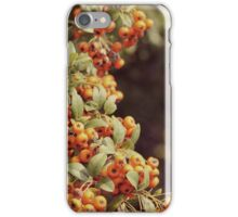 Bittersweet Autumn iPhone Case/Skin