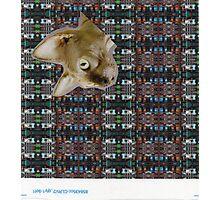 scan 12 Photographic Print