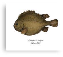 Lumpfish Canvas Print
