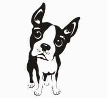 Boston Terrier Dog  by DKMurphy